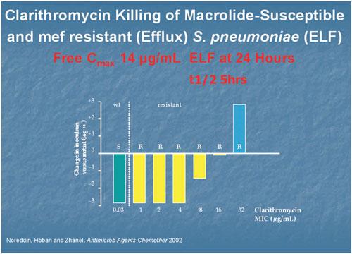 wirkung beta lactam antibiotika